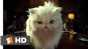 <b>Cats</b> & <b>Dogs</b> (2/10) Movie CLIP - Mr. Tinkles (2001) HD - YouTube