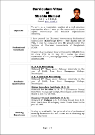 sample curriculum vitae template samples examples sample curriculum vitae template