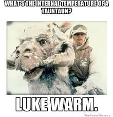 What's The Internal TEmperature Of A Tauntaun? | WeKnowMemes via Relatably.com