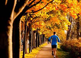 Exercise   International Osteoporosis Foundation International Osteoporosis Foundation