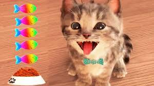 Little Kitten <b>My Favorite Cat</b> Pet Care Game