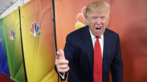 essay so you want to be a celebrity you ll need some trumpian essay so you want to be a celebrity you ll need some trumpian brashness talent is optional