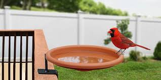The best <b>bird bath</b> you can buy - Business Insider