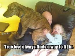 true-love-meme-300x225.jpg via Relatably.com