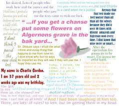 flowers for algernon by chocky pocky on flowers for algernon by chocky pocky