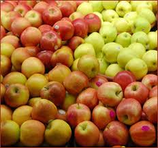 תוצאת תמונה עבור תפוחים