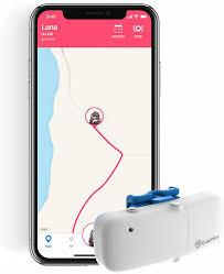 Купить <b>GPS</b>-<b>трекер</b> для кошек <b>Tractive GPS Cat</b>, белый (TRKAT1 ...