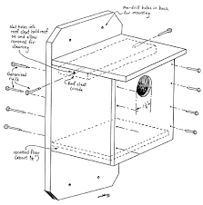 Researchers learn what it takes to make the bluebird of happiness    bluebird box plan