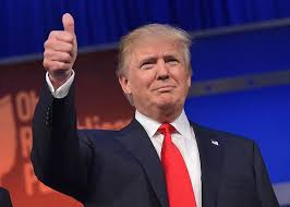 what donald trumps ascendance says about the future of higher  what donald trumps ascendance says about the future of higher education essay