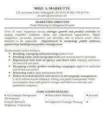 of professional summary on sample professional summary resume sample professional summary resume