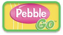 Image result for pebblego