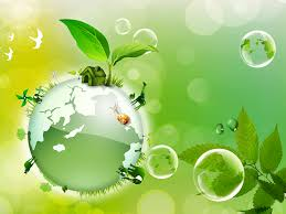 go green environment essay  go green environment essay