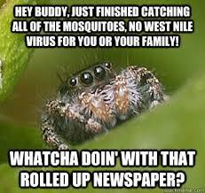 Misunderstood Spider memes   quickmeme via Relatably.com
