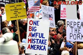 Image result for tea party protest
