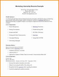 internship resume examples budget template 7 internship resume examples
