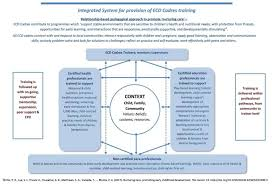 Reaching expert consensus on training different <b>cadres</b> in delivering ...