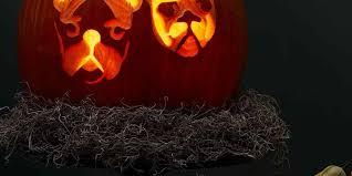 <b>Halloween Pumpkin</b> Ideas   Martha Stewart