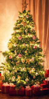 <b>Christmas tree</b> | Tradition, History, Decorations, Symbolism, & Facts ...