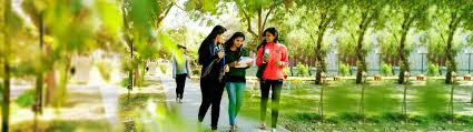 10 tips tricks to smartly survive first year of college perhaps
