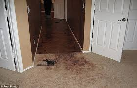 Travis Alexander    s home now a tourist attraction as followers of    Gone  When the family looked at the house  parts of the carpet and the