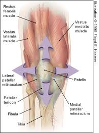 6 Common Causes of Knee Pain and How to Fix Them: Part 2