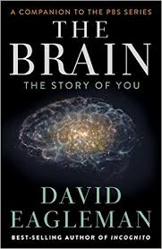 Image result for the brain with david eagleman
