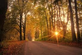 <b>Hello fall</b>! Equinox kicks off autumn on Sept. 22 | Live Science