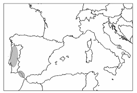 Two additions to the Jacea-Lepteranthus complex: parallel ...