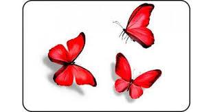Купить <b>Стол кухонный</b> Бабочки <b>красные</b> 015 - недорого по самой ...