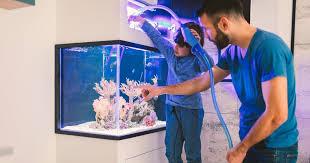 Как выбрать <b>аквариум</b> — статья в Журнале Маркета