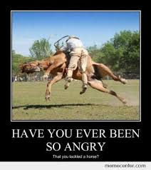 Have You Been So Angry And You Tackled a Horse by ben - Meme Center via Relatably.com