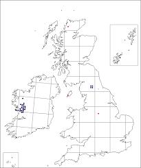 Gentiana verna | Online Atlas of the British and Irish Flora
