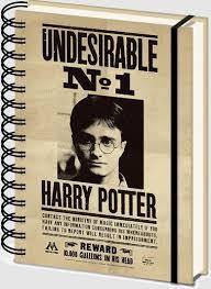 Записная книжка Harry Potter (Sirius & Harry) 3D Cover A5 Wiro ...