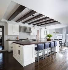 Contemporary Galley Kitchen Kitchen Designs Kitchen Transitional With Long Kitchen Island