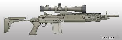 Image result for M14 ebr