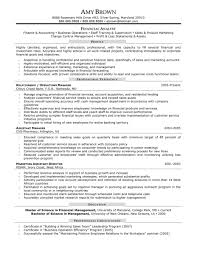 athletic director resume objective finance director cv template cv professional