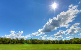 Image result for sunny pictures