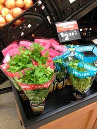 Kitchen Windowsill Herb Garden Kitchen Windowsill Herb Garden Frugal Upstate
