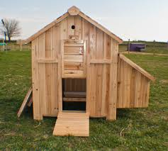 Free Hen House Plans   How to Build A Chicken Coop  chicken coop plans