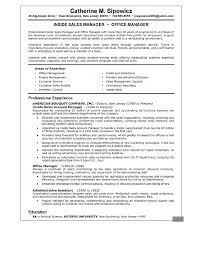 it manager resume executive summary cipanewsletter executive summary resume examples executive summary example resume