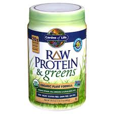 Garden Of Life <b>Raw Organic Protein</b> Powder, Vanilla, 22 oz NOT ...