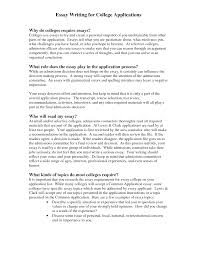 Examples Introduction Essay Essay Writing Samples Examples On How Write