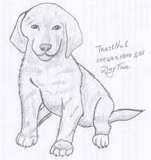 Собака <b>таксы</b> вбарнауле | Рисовать, Собака <b>такса</b>, Лошади