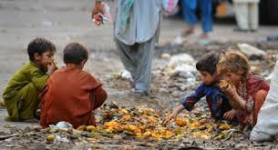 Image result for food waste and hunger