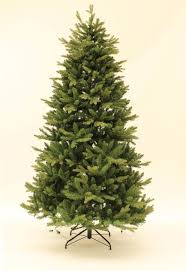 Want to buy <b>Royal Christmas Arkansas</b> PE / PVC <b>Premium</b> 210 cm?