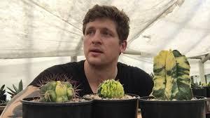 <b>Грунт</b> для кактусов - сажаем колючих питомцев правильно ...