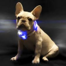 <b>Ошейник</b> светящийся <b>Xiaomi Little Beast</b> Star Pet Glowing Collar ...