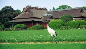 Resultado de imagen para que ver en okayama