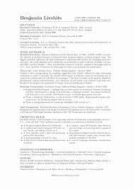 benjamin livshits resume my resume