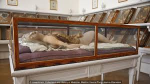 bbc culture why these anatomical models are not disgusting a question of faith credit credit josephinum collections and history of medicine